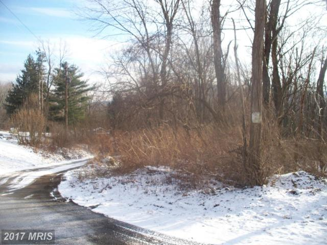 Piney Mountain Road, Eckhart Mines, MD 21528 (#AL9832176) :: Pearson Smith Realty