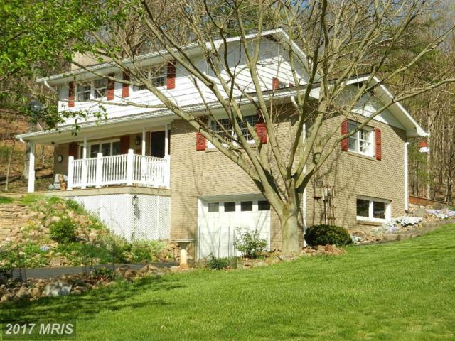 15300 Cresap Mill Road, Oldtown, MD 21555 (#AL9920317) :: Pearson Smith Realty