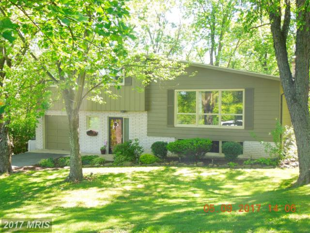 16106 Rawlings Heights Drive, Rawlings, MD 21557 (#AL9941919) :: Pearson Smith Realty