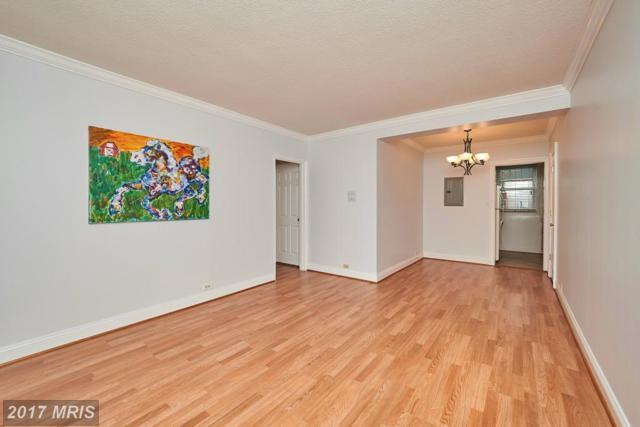 208 Trenton Street N #1, Arlington, VA 22203 (#AR10001914) :: Pearson Smith Realty