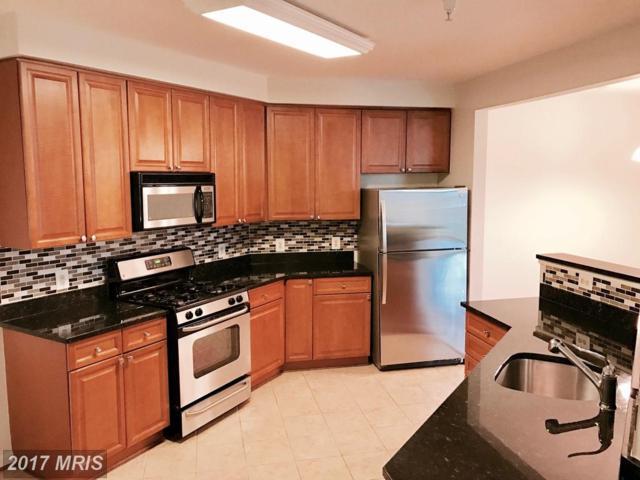 801 Greenbrier Street S #311, Arlington, VA 22204 (#AR10003111) :: Pearson Smith Realty