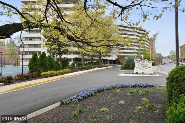 5300 Columbia Pike #503, Arlington, VA 22204 (#AR10227313) :: RE/MAX Executives