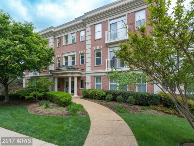 1555 Colonial Terrace #501, Arlington, VA 22209 (#AR9930350) :: LoCoMusings
