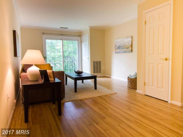 2050 Calvert Street #408, Arlington, VA 22201 (#AR9980383) :: LoCoMusings