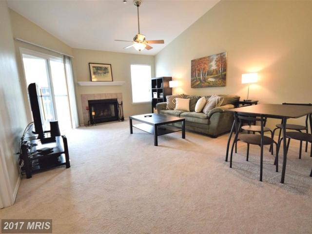 3309 Wyndham Circle #4176, Alexandria, VA 22302 (#AX10030234) :: Pearson Smith Realty