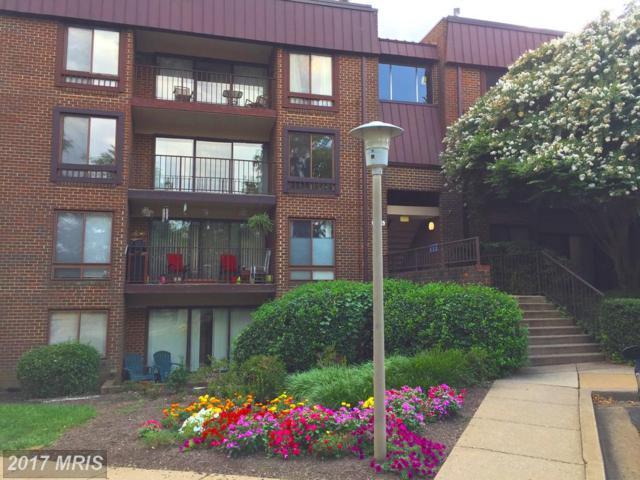136 Roberts Lane #401, Alexandria, VA 22314 (#AX10041416) :: Pearson Smith Realty