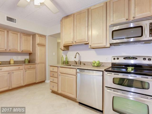 5170 Maris Avenue #100, Alexandria, VA 22304 (#AX10043631) :: Pearson Smith Realty