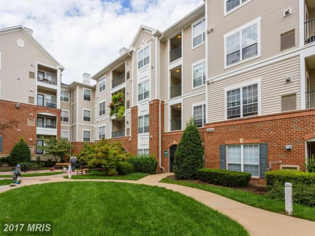 4850 Eisenhower Avenue #322, Alexandria, VA 22304 (#AX10064880) :: Pearson Smith Realty