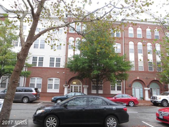4951 Brenman Park Drive #414, Alexandria, VA 22304 (#AX10079845) :: The Belt Team
