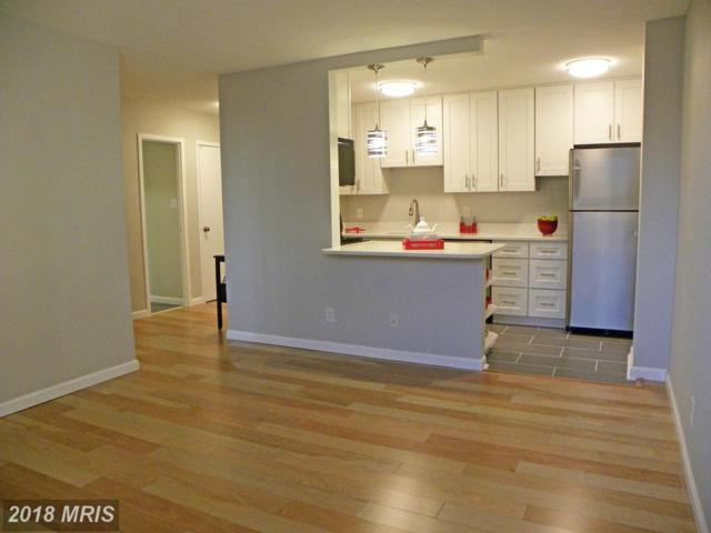 501 Slaters Lane #212, Alexandria, VA 22314 (#AX10118621) :: Pearson Smith Realty