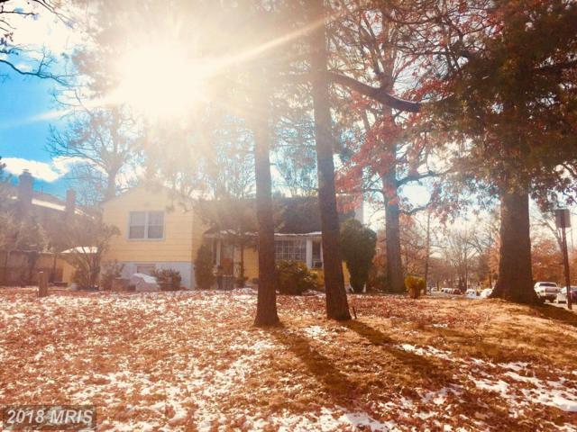 5216 Seminary Road, Alexandria, VA 22311 (#AX10121985) :: Pearson Smith Realty