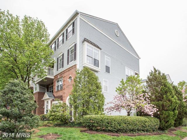 1734 Kingsgate Court #303, Alexandria, VA 22302 (#AX10220078) :: Gail Nyman Group