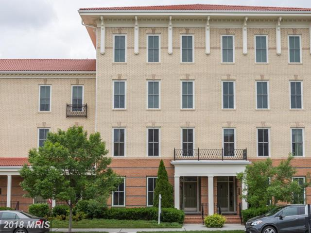 2409 Conoy Street #101, Alexandria, VA 22301 (#AX10224340) :: Keller Williams Pat Hiban Real Estate Group