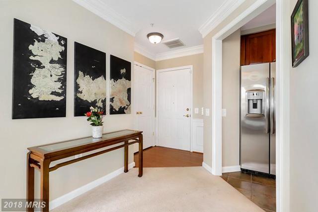 1404 Roundhouse Lane #306, Alexandria, VA 22314 (#AX10228380) :: Jim Bass Group of Real Estate Teams, LLC