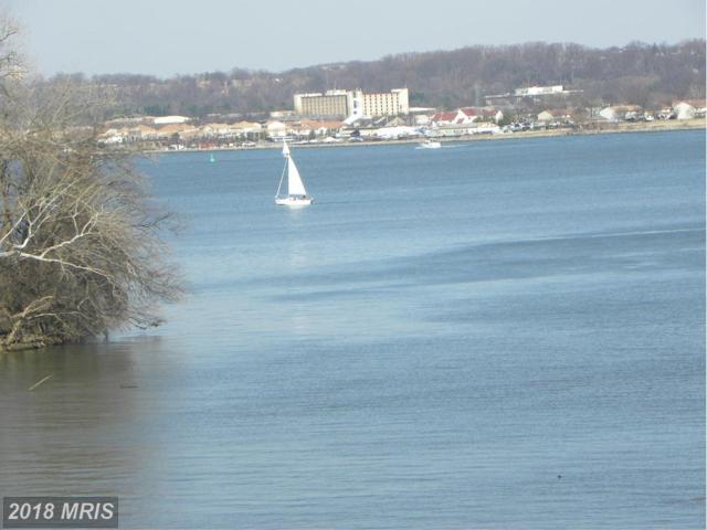 501 Slaters Lane #117, Alexandria, VA 22314 (#AX10247206) :: Green Tree Realty