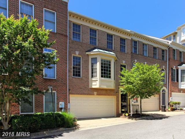 2536 Gadsby Place, Alexandria, VA 22311 (#AX10250088) :: RE/MAX Executives