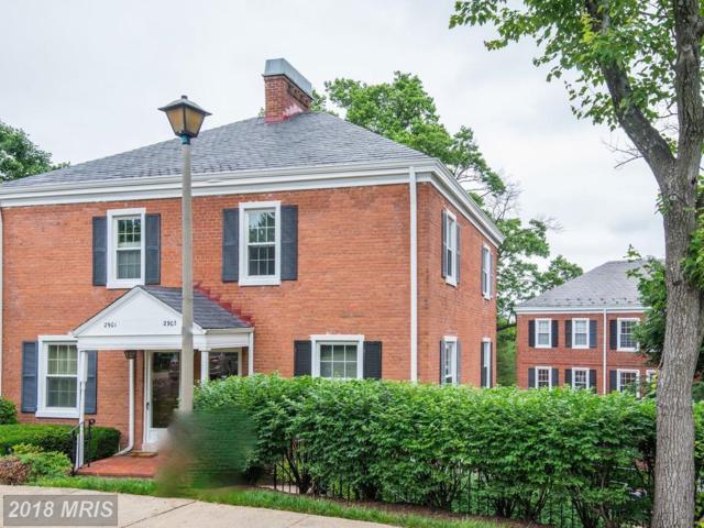 2903 Dinwiddie Street, Arlington, VA 22206 (#AX10256804) :: Pearson Smith Realty