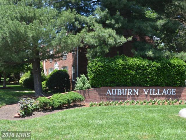 4 Auburn Court C, Alexandria, VA 22305 (#AX10258548) :: Pearson Smith Realty