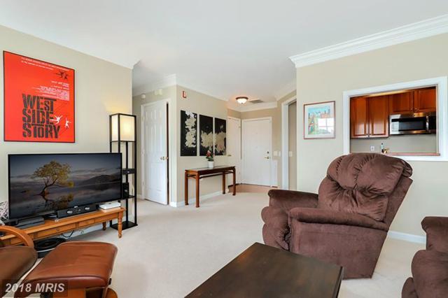 1404 Roundhouse Lane #306, Alexandria, VA 22314 (#AX10275683) :: Advance Realty Bel Air, Inc