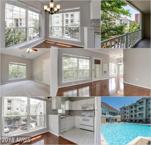 4560 Strutfield Lane #1201, Alexandria, VA 22311 (#AX10288833) :: Charis Realty Group