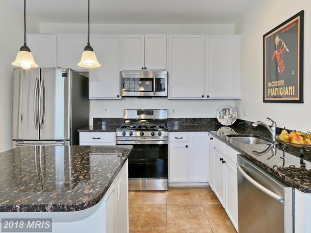 5074 Donovan Drive #104, Alexandria, VA 22304 (#AX10293935) :: Provident Real Estate