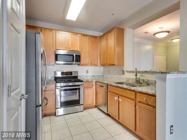 4852 Eisenhower Avenue #237, Alexandria, VA 22304 (#AX10302198) :: SURE Sales Group