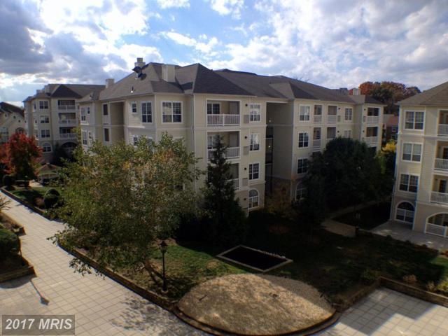 4550 Strutfield Lane #2213, Alexandria, VA 22311 (#AX9948024) :: Pearson Smith Realty