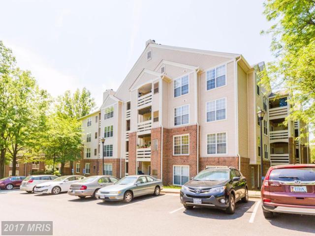 244 Reynolds Street #409, Alexandria, VA 22304 (#AX9954058) :: Pearson Smith Realty
