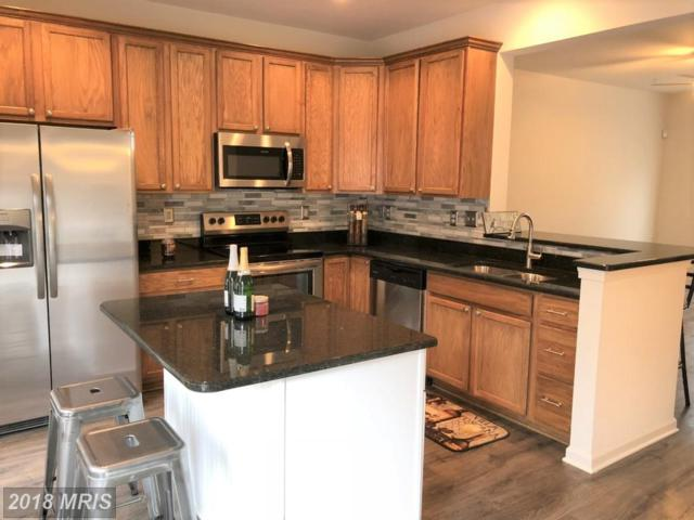 5326 Wyndholme Circle #95, Baltimore, MD 21229 (#BA10194660) :: Dart Homes