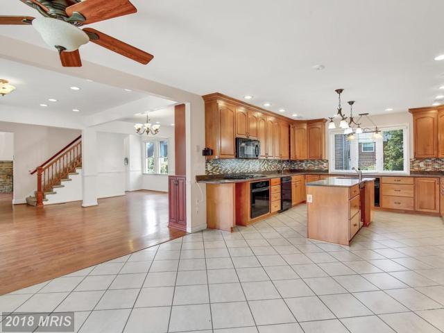 3300 Pinkney Road, Baltimore, MD 21215 (#BA9011199) :: Colgan Real Estate