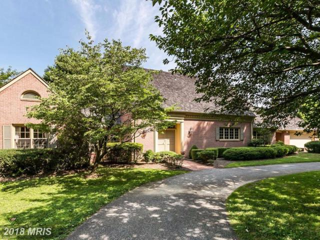 4813 Long Green Road, Hydes, MD 21082 (#BC10005006) :: Pearson Smith Realty