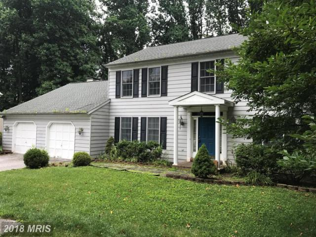 12308-B Timber Grove Road, Owings Mills, MD 21117 (#BC10006654) :: Pearson Smith Realty