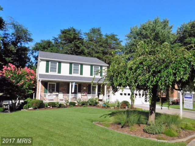 24 Tulip Tree Court, Baltimore, MD 21221 (#BC10019053) :: Pearson Smith Realty
