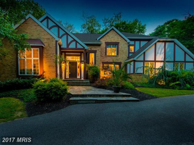 7 Aston Court, Owings Mills, MD 21117 (#BC10019563) :: Pearson Smith Realty