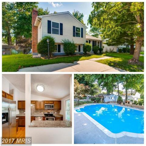 7 Raintree Court, Baltimore, MD 21221 (#BC10021020) :: Pearson Smith Realty