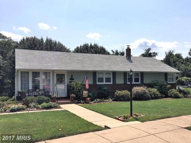 407 Allview Court, Catonsville, MD 21228 (#BC10030991) :: LoCoMusings
