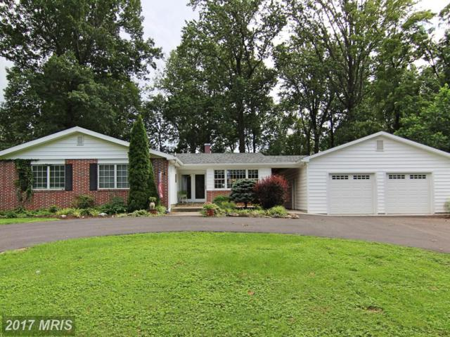 103 Tree Top Court, Lutherville Timonium, MD 21093 (#BC10034350) :: The Dailey Group