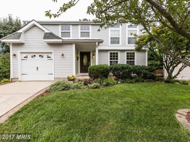 310 Lantana Drive, Owings Mills, MD 21117 (#BC10038216) :: Pearson Smith Realty