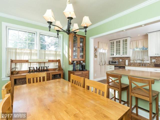 8716 Summit Avenue, Baltimore, MD 21234 (#BC10042645) :: Pearson Smith Realty