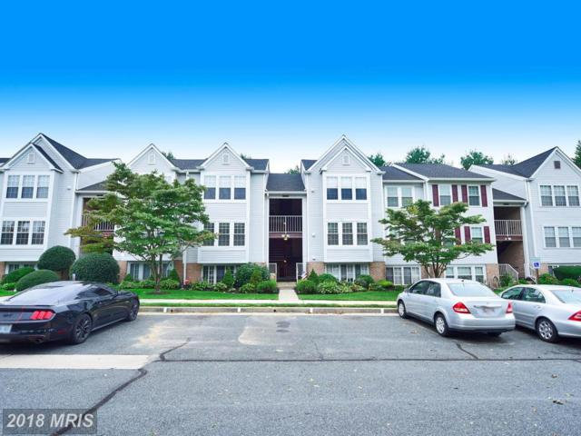 13 Bridle Lane #70, Baltimore, MD 21236 (#BC10044276) :: Pearson Smith Realty