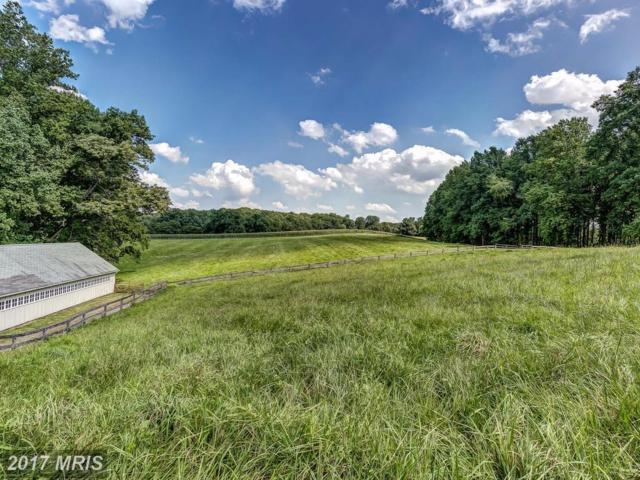13601 Mantua Mill Road, Butler, MD 21023 (#BC10050324) :: Pearson Smith Realty