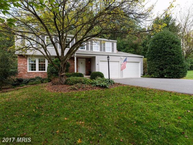 16 Franklin Valley Circle, Reisterstown, MD 21136 (#BC10054736) :: LoCoMusings
