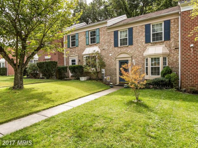 7 Stead Court, Baltimore, MD 21228 (#BC10067179) :: LoCoMusings