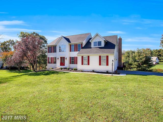 20 Farm Ridge Court, Baldwin, MD 21013 (#BC10071372) :: Town & Country Real Estate