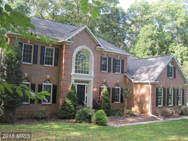 14 Falling Water Court, Reisterstown, MD 21136 (#BC10082048) :: Pearson Smith Realty