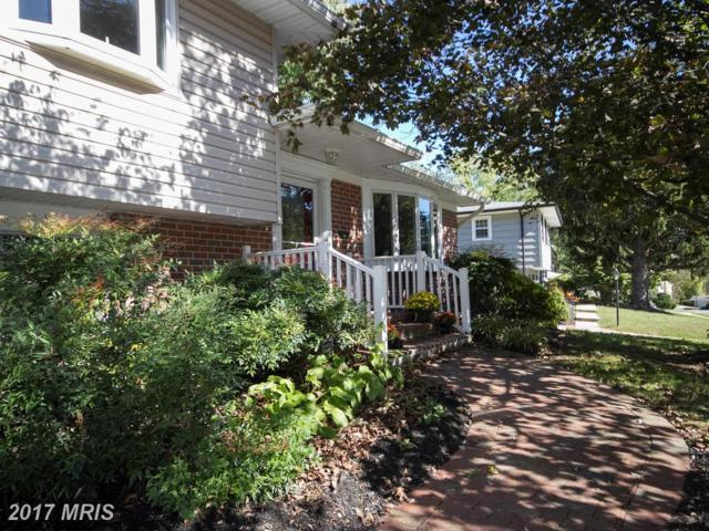 2448 Spring Lake Drive, Lutherville Timonium, MD 21093 (#BC10087252) :: Pearson Smith Realty
