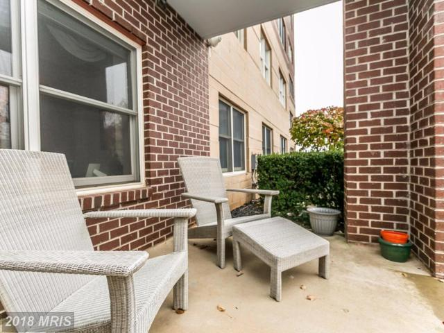 12240 Roundwood Road #109, Lutherville Timonium, MD 21093 (#BC10101154) :: Pearson Smith Realty