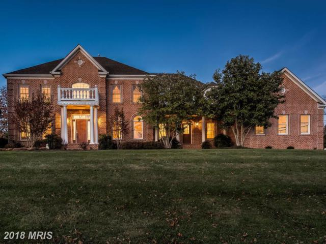 10360 Pot Spring Road, Lutherville Timonium, MD 21093 (#BC10110674) :: Pearson Smith Realty