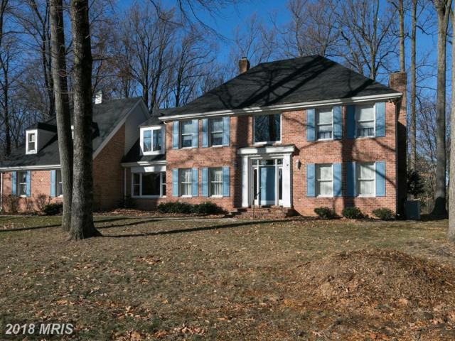 14110 Robcaste Road, Phoenix, MD 21131 (#BC10121680) :: Pearson Smith Realty