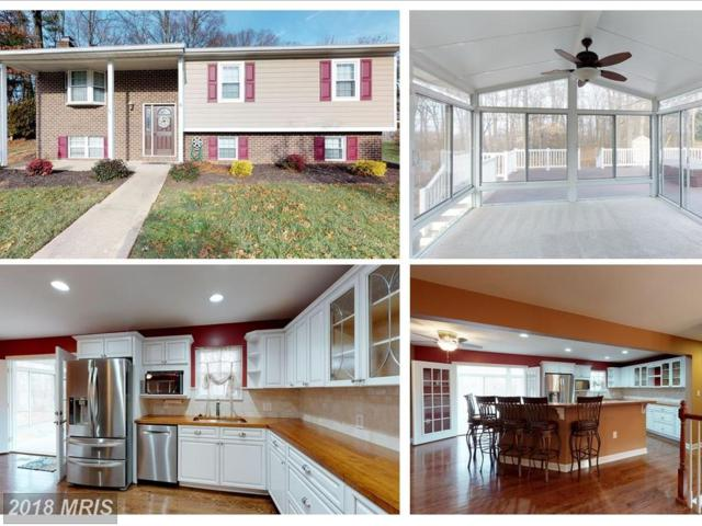6 Ranger Court, Baltimore, MD 21234 (#BC10123010) :: Pearson Smith Realty
